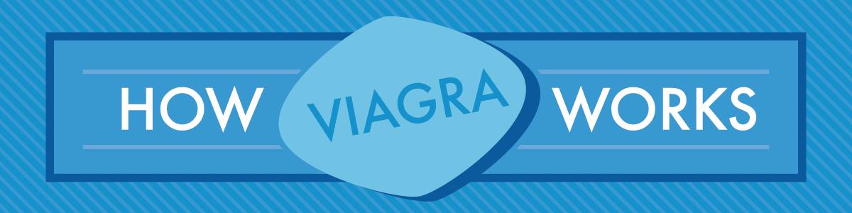 How Viagra Works
